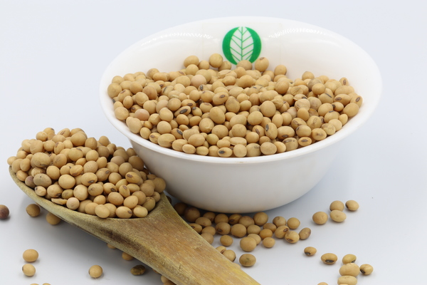 Rwanda Soybeans