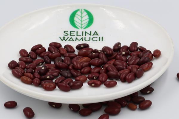 Uganda Kidney Beans