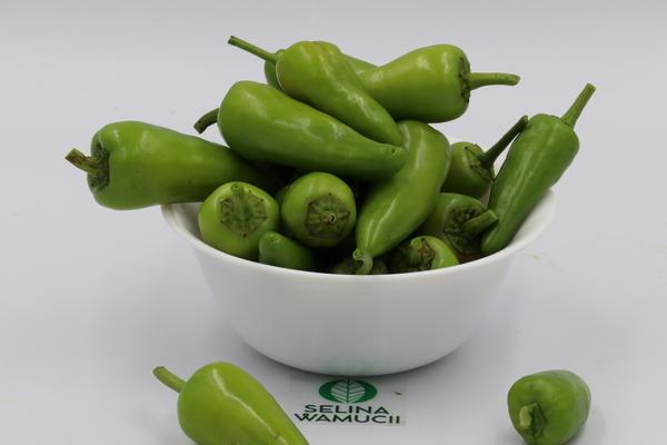 Ethiopia pepper