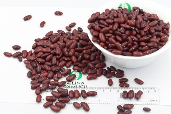 Malawi Kidney Beans