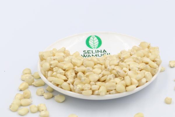 Zimbabwe Maize