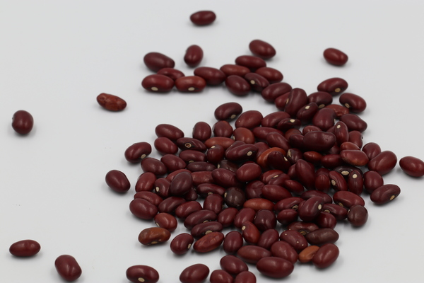 Morocco Red Kidney Beans